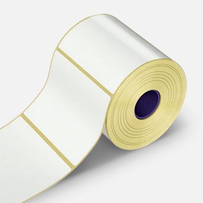 Samoprzylepne PP (polypropylen) etykiety, 30x100mm, 500 szt., pro TTR, biały, rolka